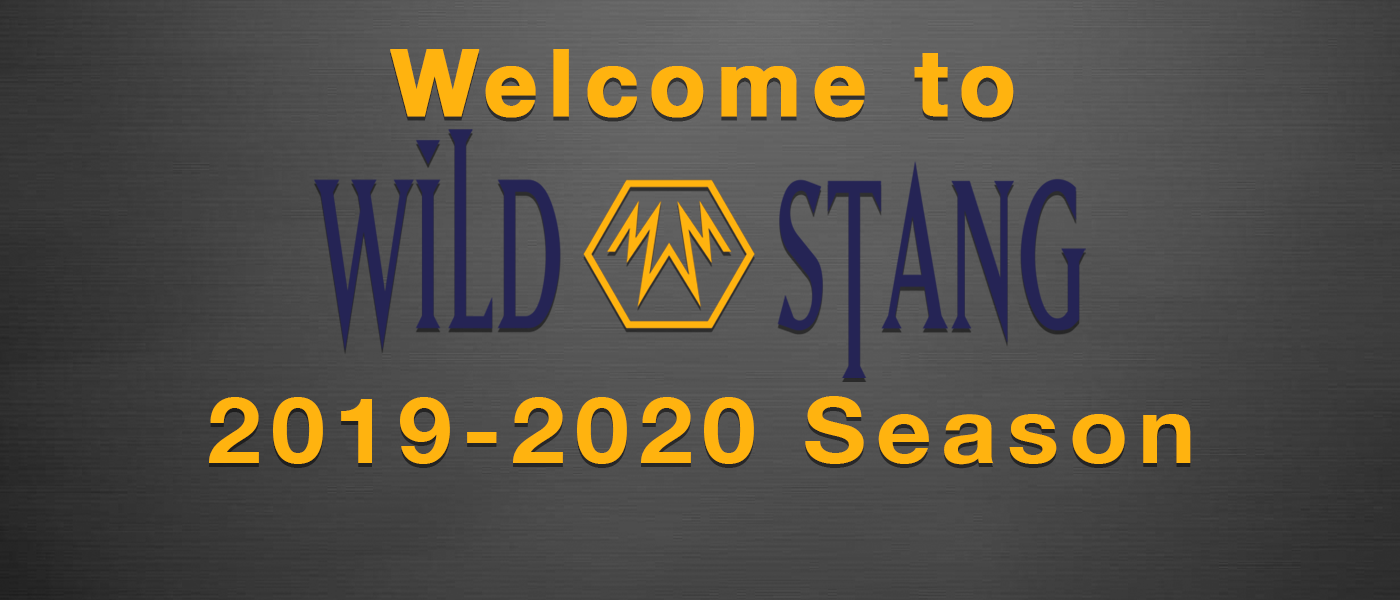 Welcome to WildStang