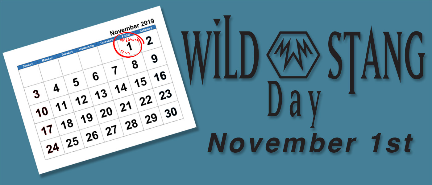 WildStang Day